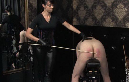 carpet beater porn movies videos clips cruel mistress