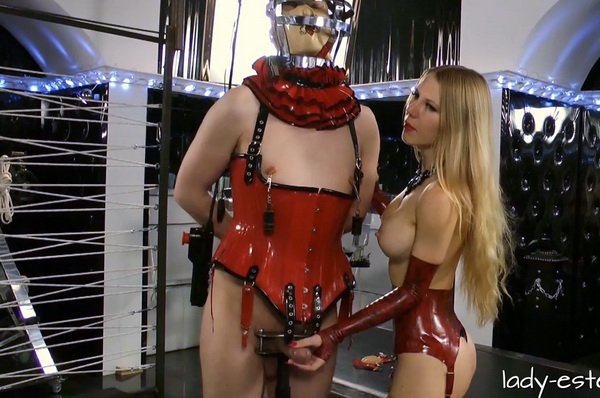 Bdsm Free cbt male commit