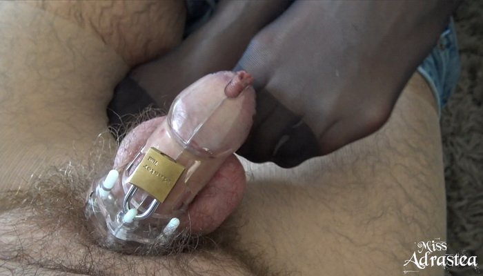 Orgasm and chastity adult gallery excellent