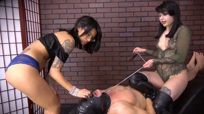 Domina Planet, Goddess Asia Perez - Ass Face